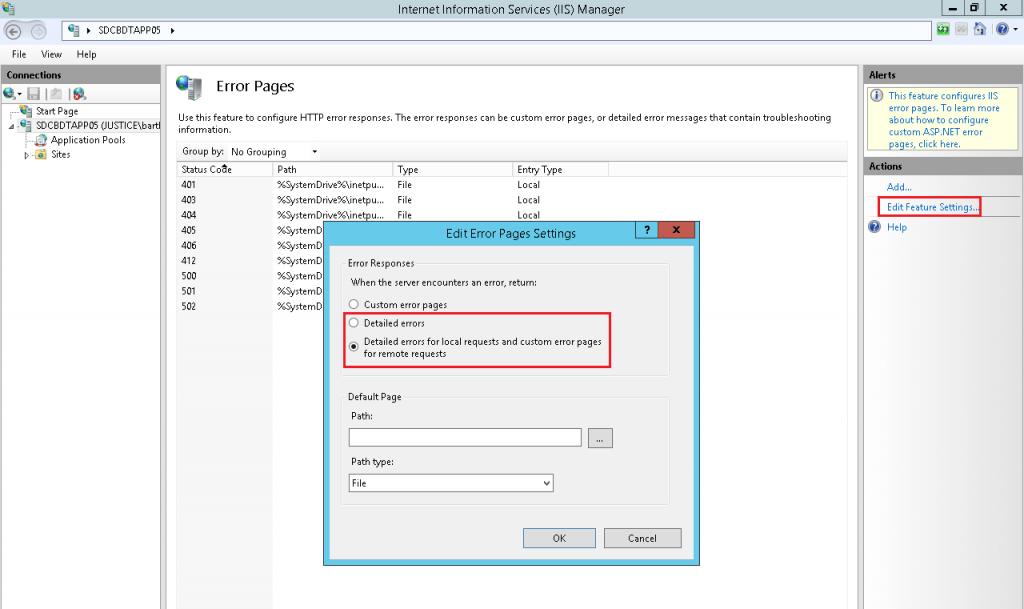 Enable Detailed IIS Errors
