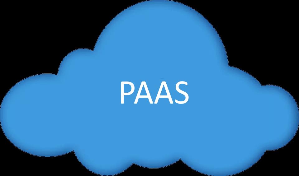 PAAS Icon